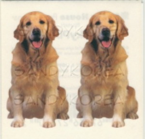 Pix-Golden Retriever